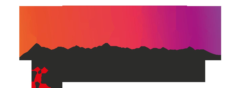 pro-stub