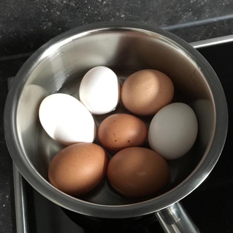 Eier im Topf